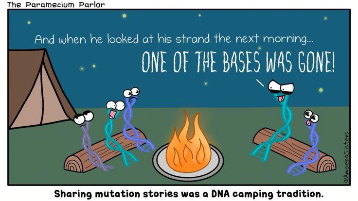 mutation-story